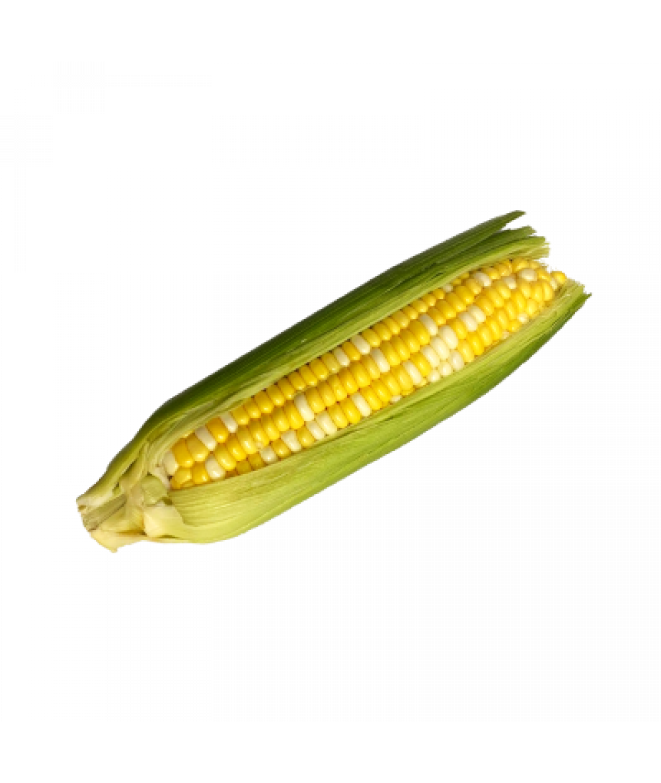 AA Sweet Corn -Unit 珍珠玉米