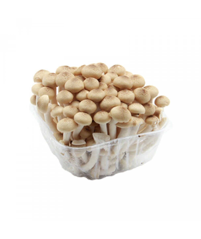 Buno Shiimeji Mushroom 150g 灵芝菇