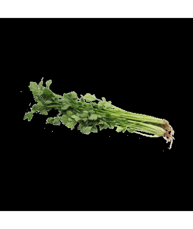 Chinese Celery 100g 芹菜