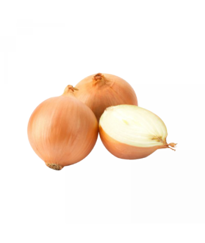 Large Yellow Onion 500g 大黄葱