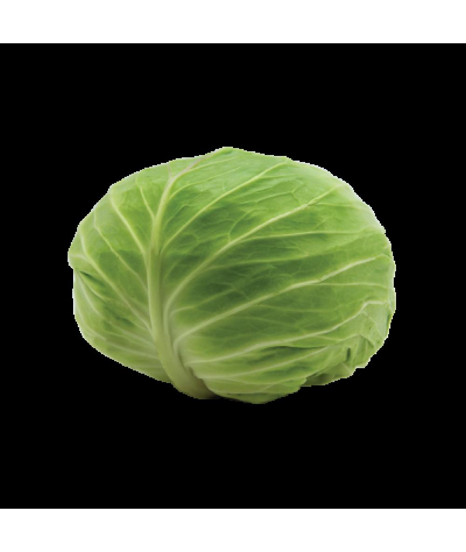 PP Round Cabbage (Cut) 480g+/-