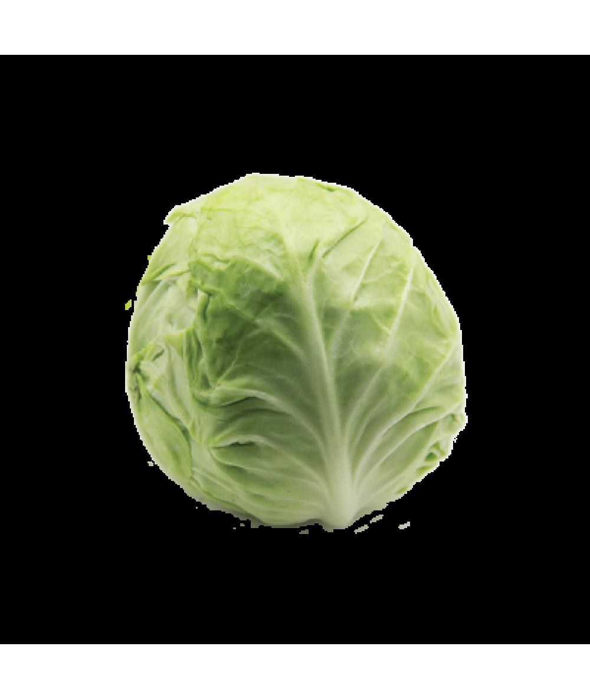 PP Beijing Cabbage (Cut) 280g+/-