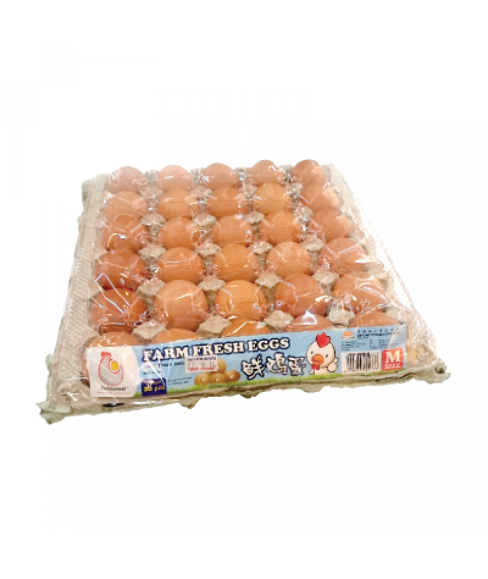 SP Chicken Egg Grade C With Cover 30's