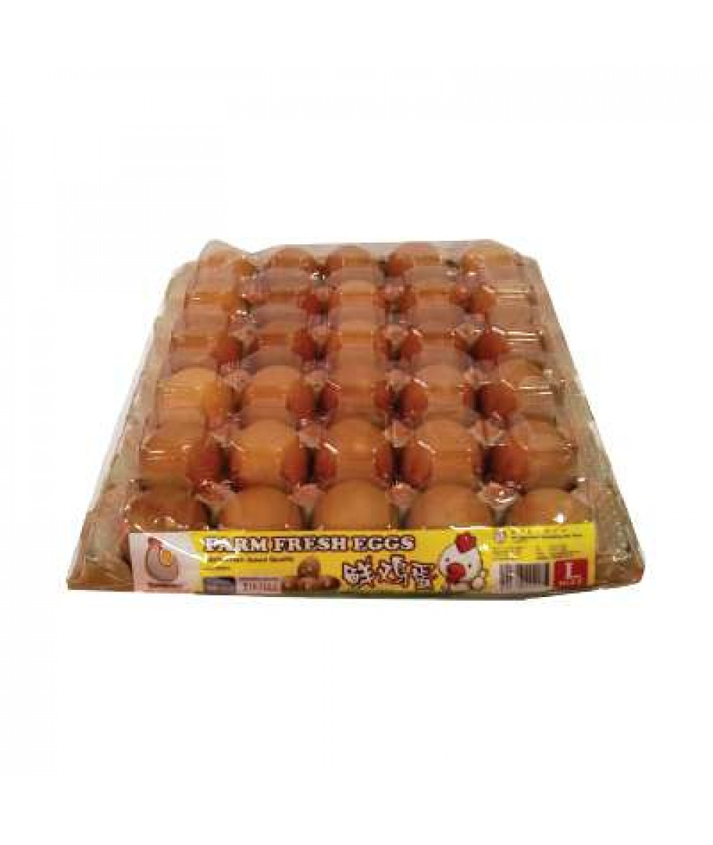 SP Chicken Egg Grade A With Cover 30's