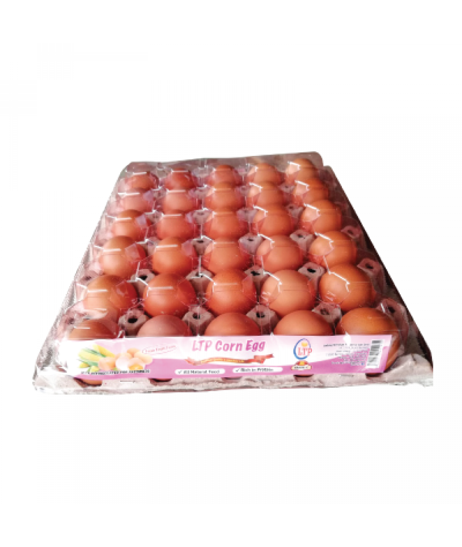LTP Chicken Egg C 30's