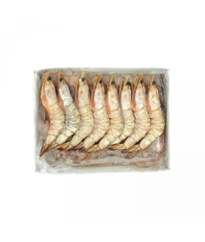 Frozen Big Sea Prawn 冷冻海虾 (21-25)