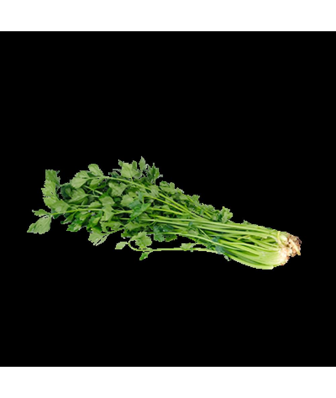 Agro Fresh Parsley 100g