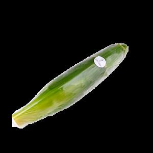 Chitose Sweet Corn 1pc