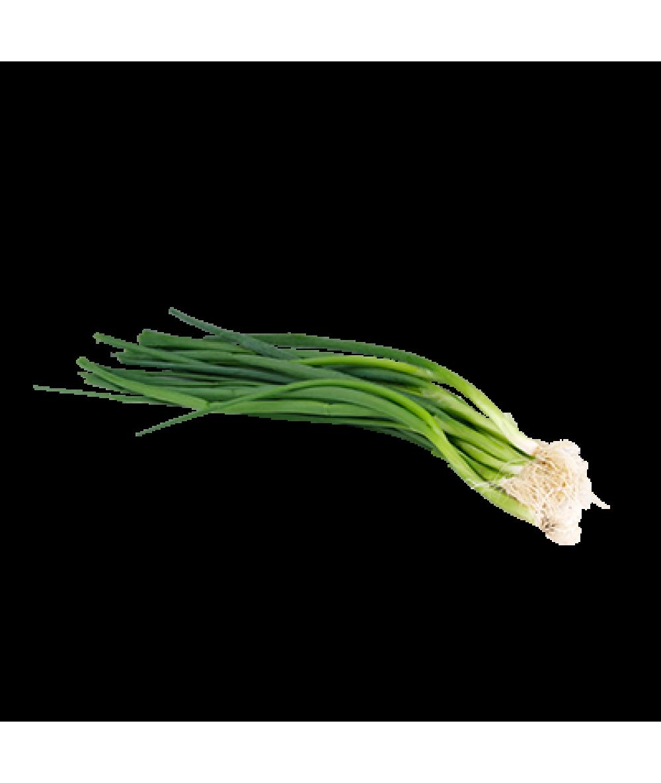 Agro Fresh Spring Onion 100g