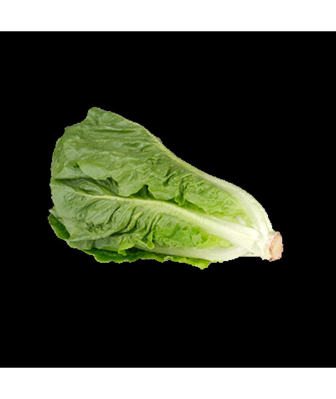 Agro Fresh Romaine Lettuce 200g