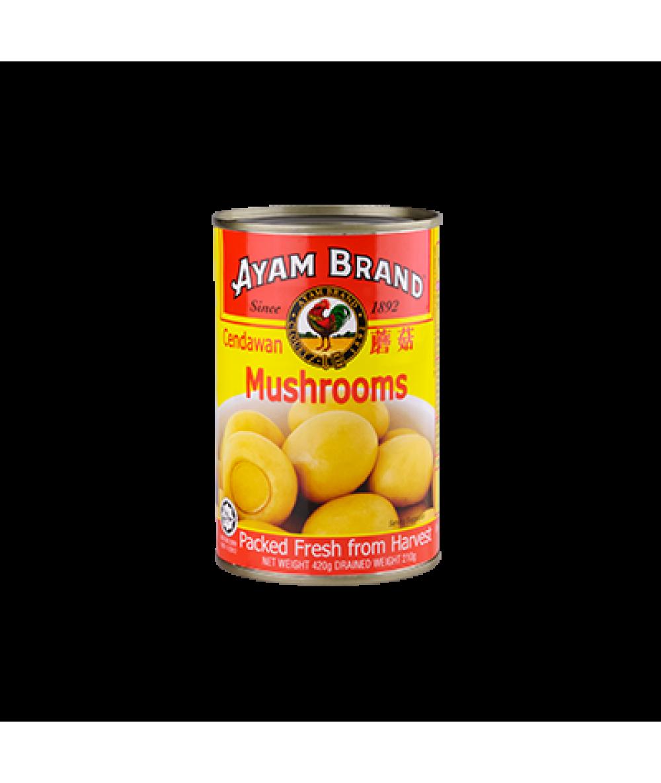 Ayam Brand Mushroom 420g