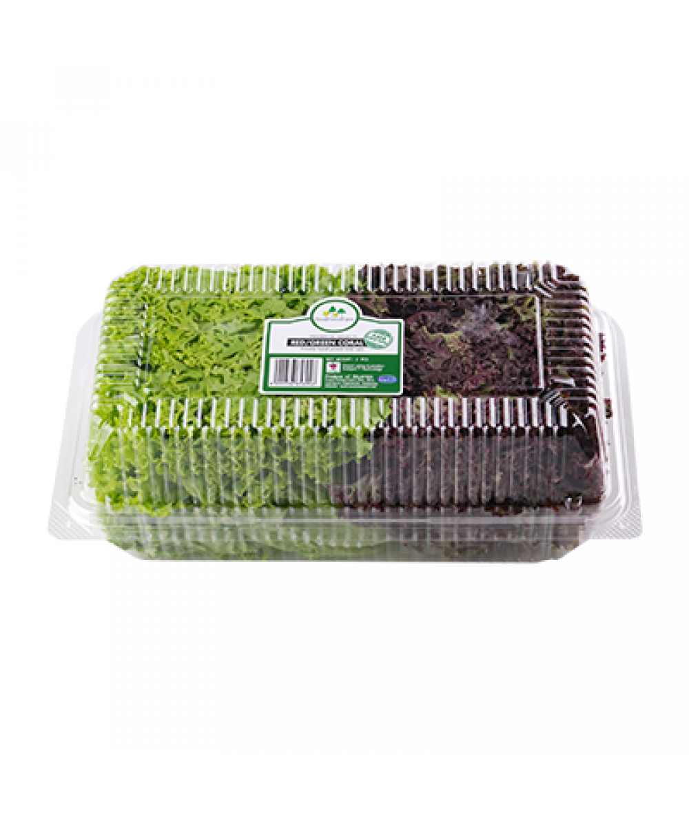 Food Forest Farm Red+Green Coral 2pcs