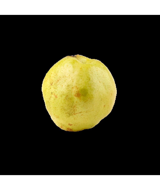 Yulu Fragrant Pear